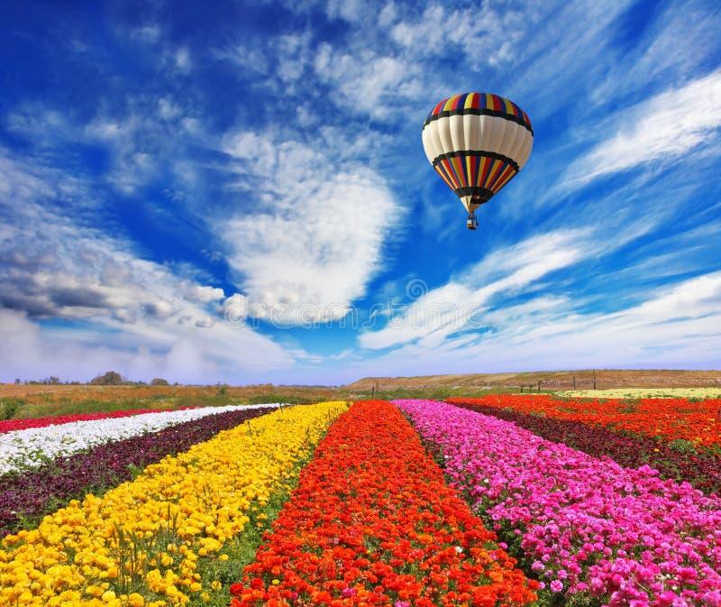 Över fält flyger den enorma sfären för luft fotografering för bildbyråer
