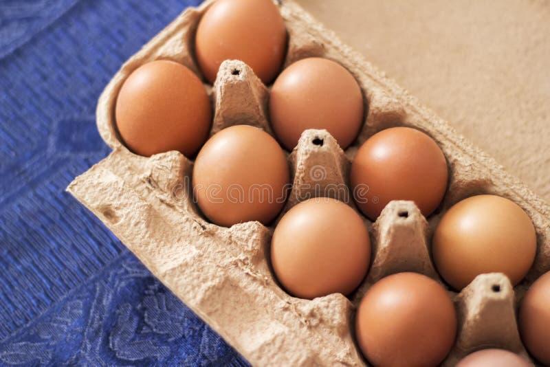 Över huvudet sikt av bruna fega ägg i en öppen ägglåda Ny feg äggbakgrund royaltyfri fotografi