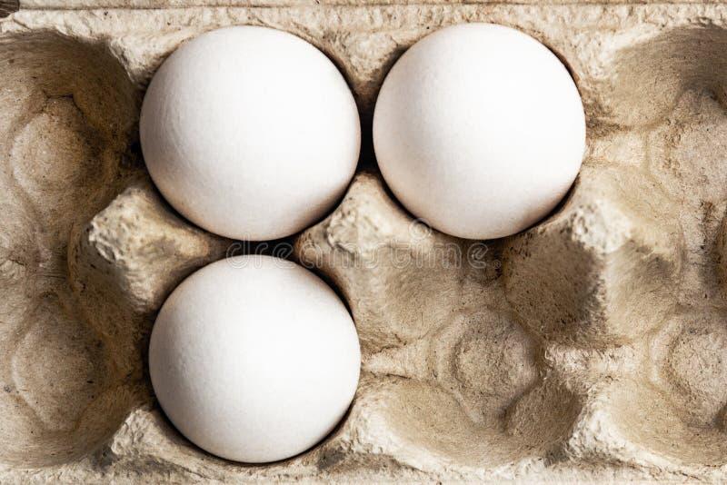 Över huvudet sikt av fega ägg i en öppen ägglåda Ny feg äggbakgrund arkivfoto