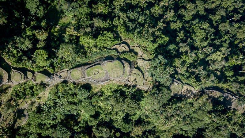 Över huvudet sikt för surr av den forntida arkeologiska borttappade staden, Colombia royaltyfria foton