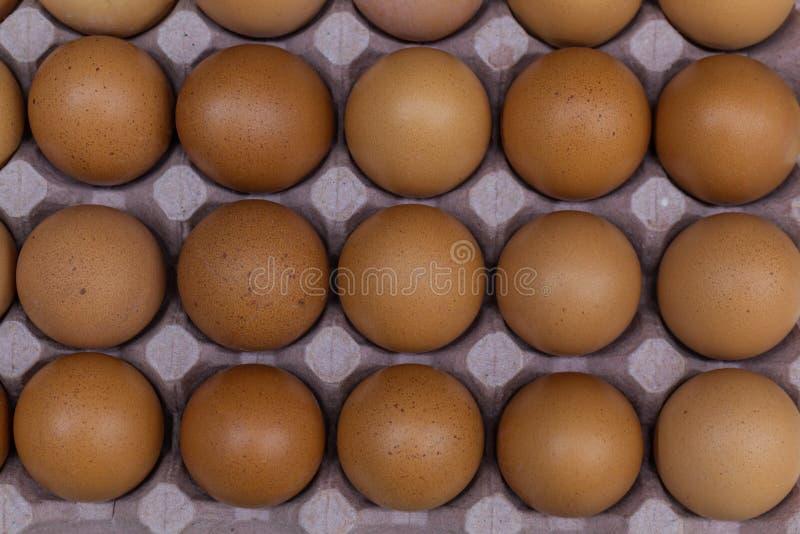 Över huvudet skott av hinken med ägg royaltyfri fotografi