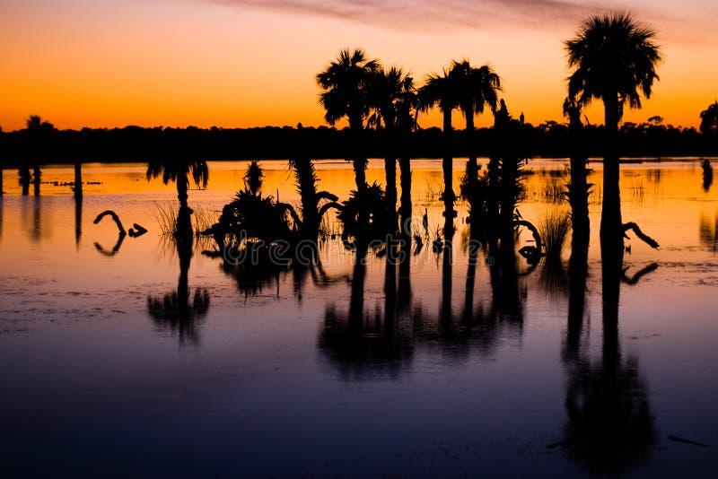 över solnedgångvåtmarker arkivfoto