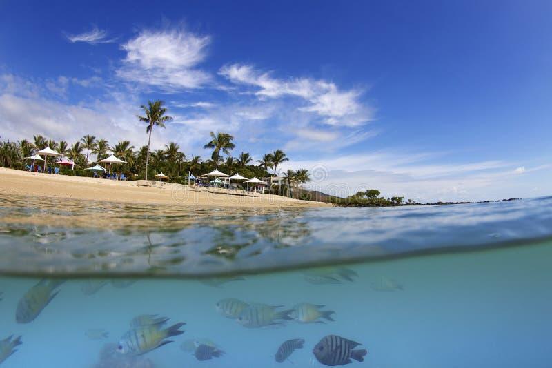 Över undervattens- av ön i pingstdagar arkivbilder