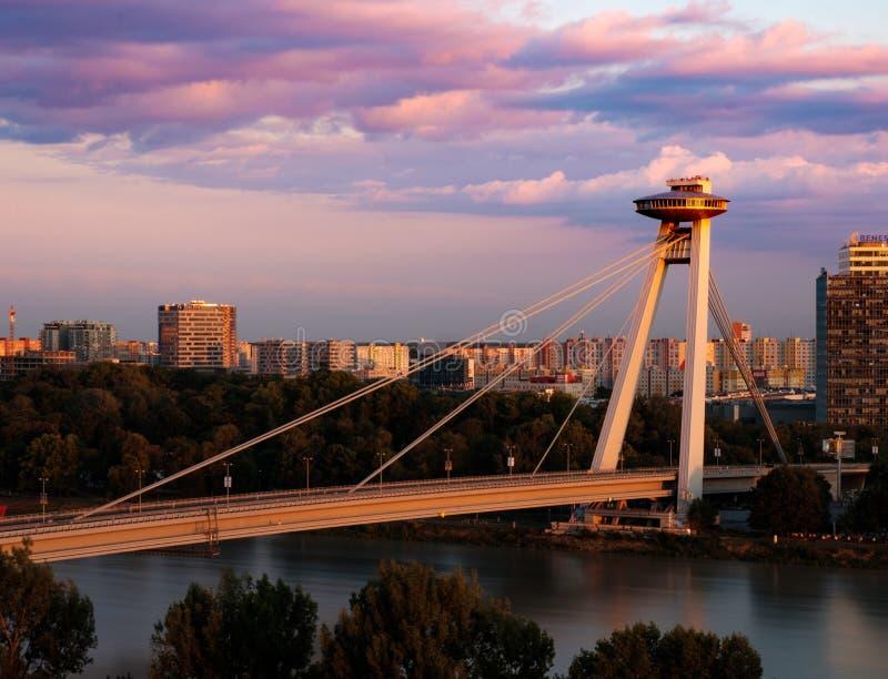 Överbrygga över Danube arkivfoto