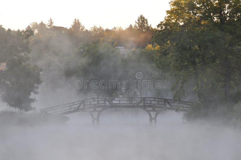 Överbrygga i dimma fotografering för bildbyråer