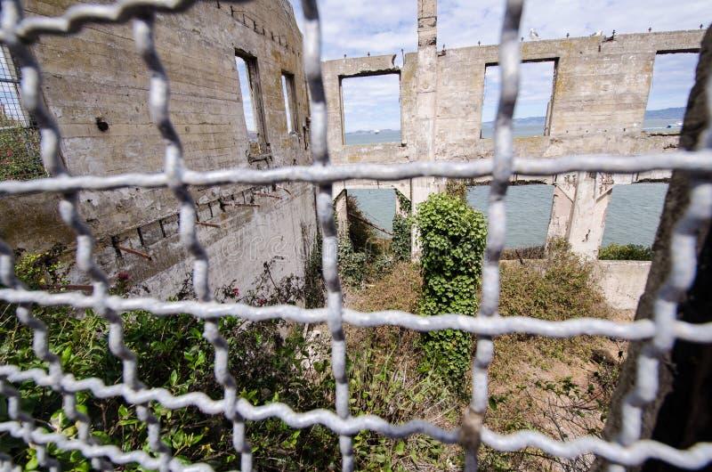Övergav byggnader på den Alcatraz ön som över tas av vegetation- och blommatillväxt royaltyfri bild
