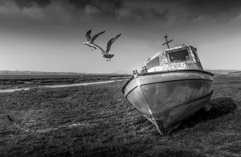 Övergav fartyg på den Penclawdd breda flodmynningen royaltyfria bilder
