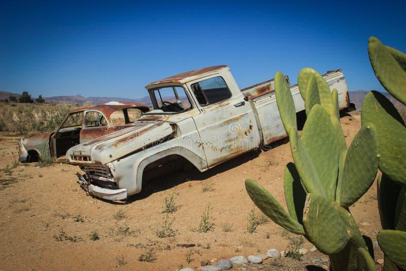 Övergav gamla rostiga bilar i öknen av Namibia omgav vid kaktuns nära den Namib-Naukluft nationalparken arkivfoto