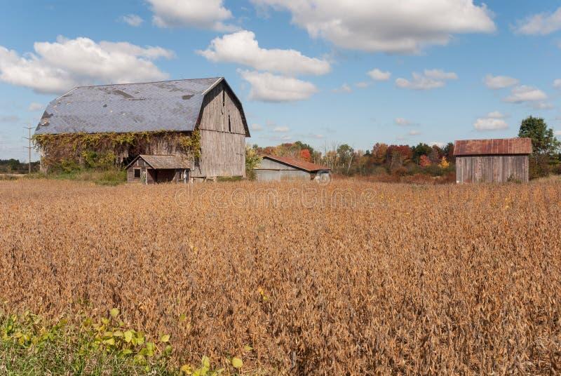 Övergav lantgårdbyggnader, Wisconsin, USA fotografering för bildbyråer