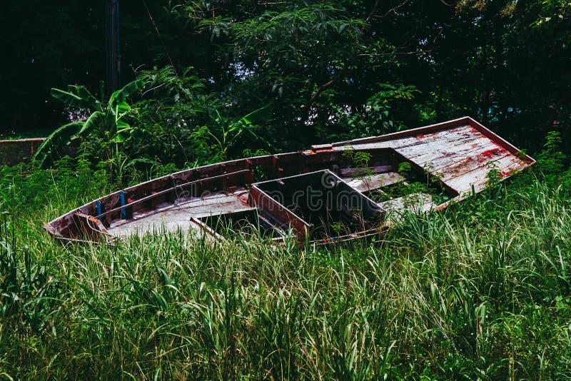 Överge träbåt eller fartyg i högt gräs i skogsträd arkivbilder