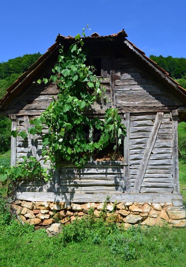 Övergett gammalt trähus som icke-är bostads- royaltyfria foton