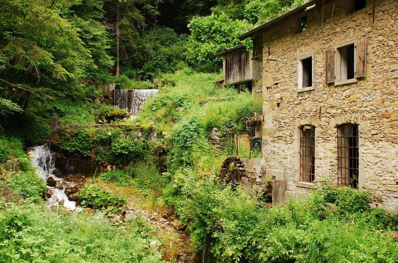 Download Övergett mala nära Salino fotografering för bildbyråer. Bild av skogar - 37347725