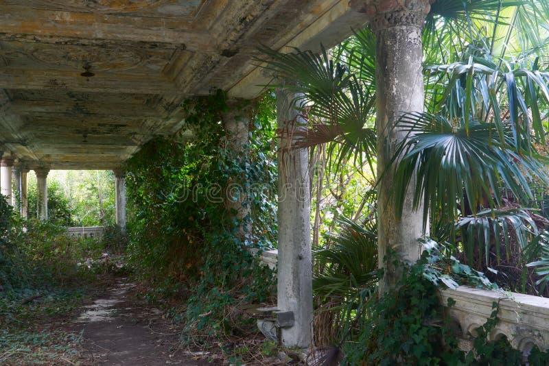 övergiven antik gammal bevuxen terrass arkivbild