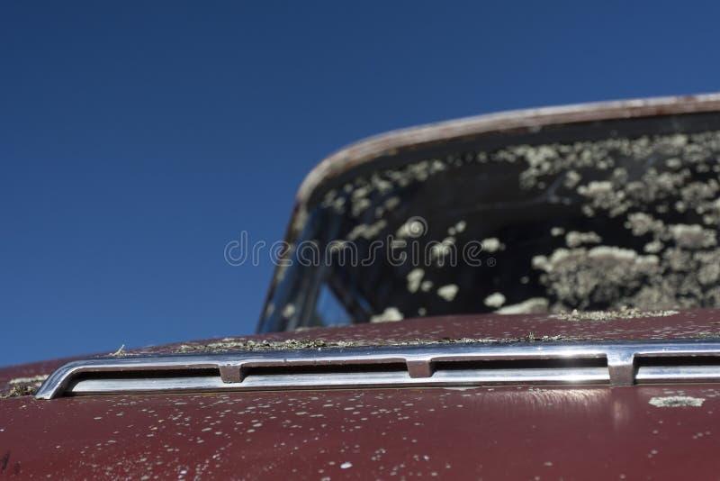 Övergiven bil med mossa royaltyfri foto