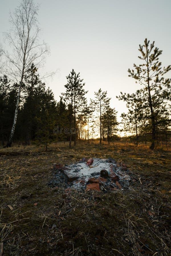 Övergiven campa brasa på en solnedgång i en skog royaltyfri fotografi