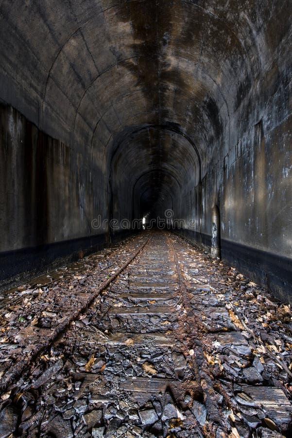 Övergiven järnvägtunnel - Ohio royaltyfri bild