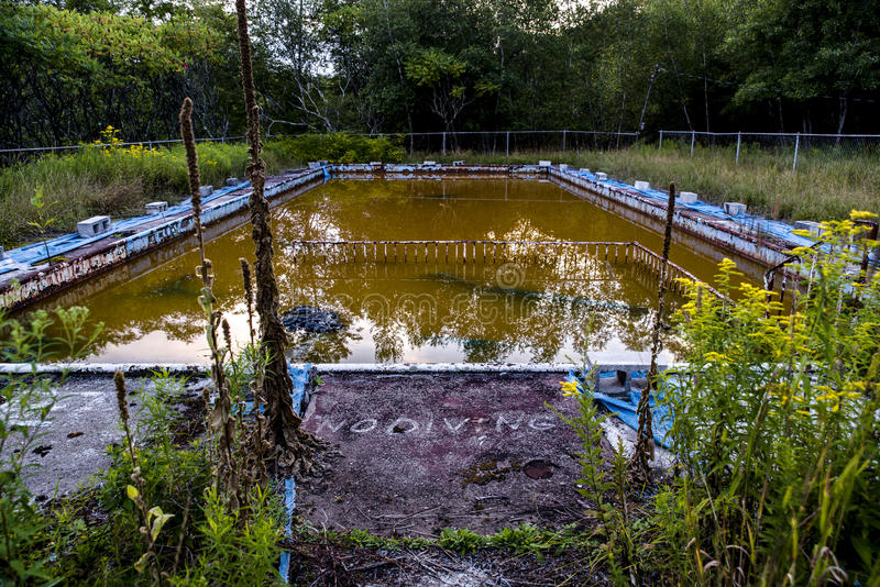 Övergiven simbassäng med inget dykningtecken - övergiven semesterort i Catskill berg royaltyfria foton