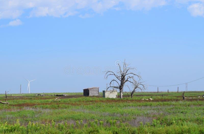 Övergiven trähydda och stormkällare i lantliga Texas Panhandle royaltyfri foto