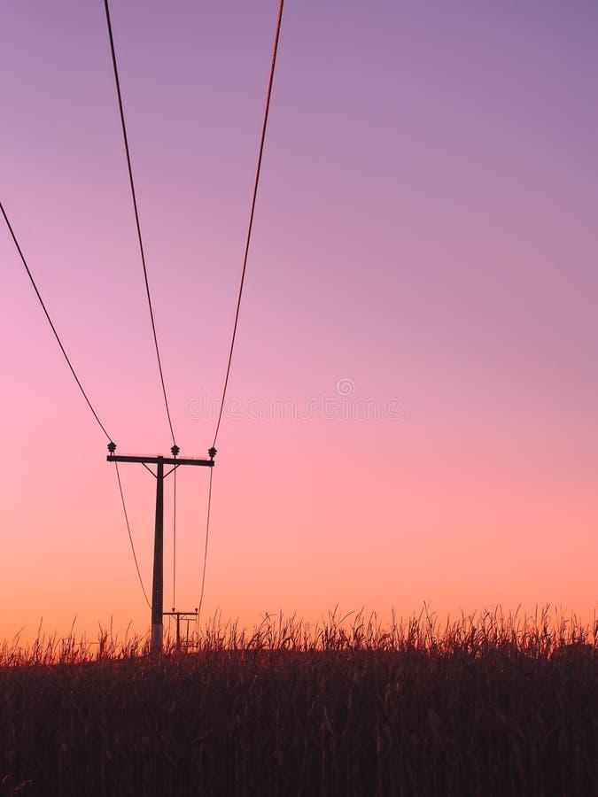 Överhetlinjer ovanför skördfält med färgglad himmelbakgrund royaltyfria foton