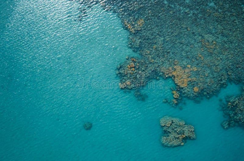 Överkänslig syn på det blå havet och korallrev på solens dag Havsyta Ekologi, havsmiljö royaltyfri fotografi