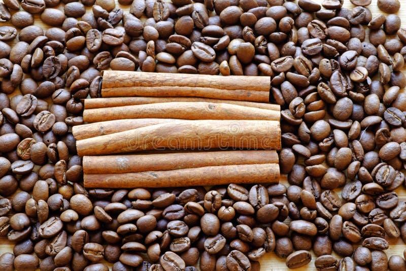 Överkant för landskap för fyrkant för kaffebönor och för kanelbruna pinnar tätt royaltyfria bilder