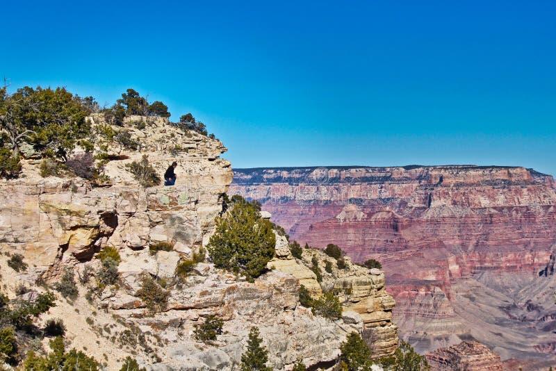 Överkant för sikt för Grand Canyon manlig besökareberg arkivbilder