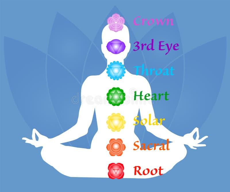 Översikten för sju chakranamn Famale kropp i lotusblommayogaasana på blå kronbladbakgrund Rota Sacral, sol-, hjärta, halsen, det  vektor illustrationer