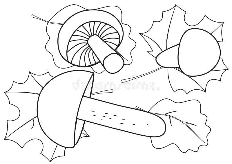 Översikter av champinjoner och stupade sidor vektor illustrationer