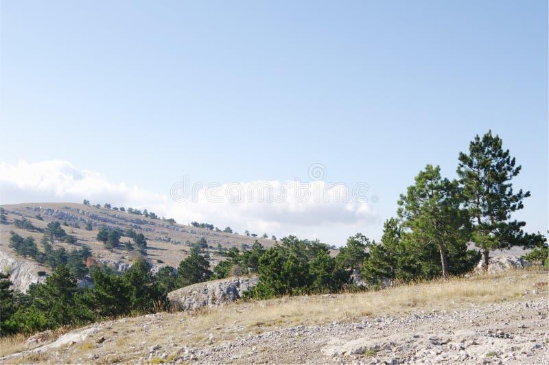 Överst av denPetri platån, Krim fotografering för bildbyråer
