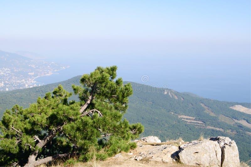 Överst av detPetri berget, sikt av den Yalta kusten, Krim arkivfoto