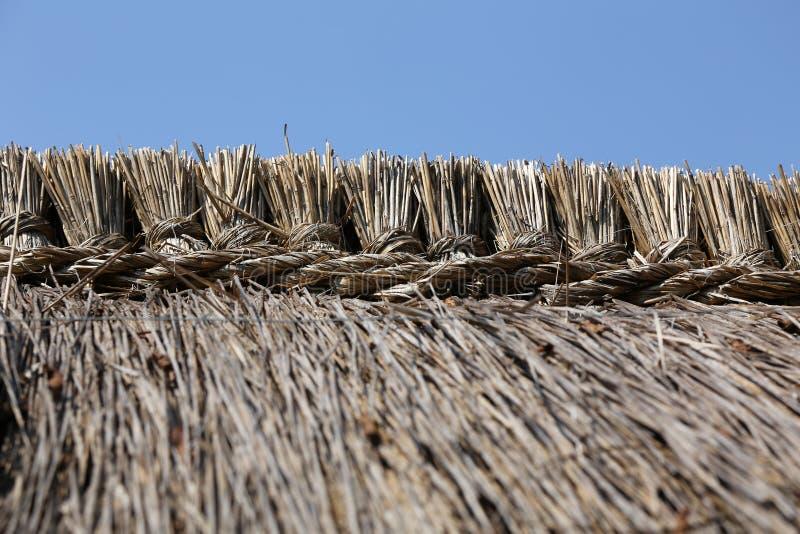 Överst på ett överdraget tak royaltyfri fotografi