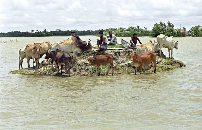 Översvämma i deltan Bangladesh, klimatförändringar arkivfoto