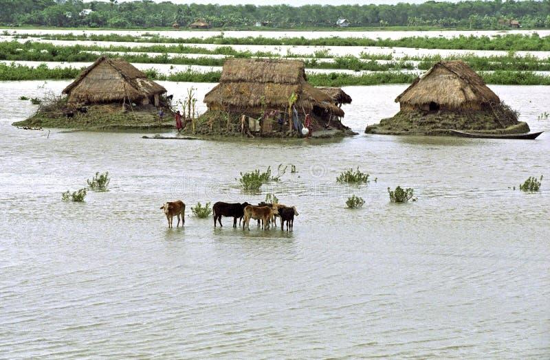 Översvämma i deltan Bangladesh, klimatförändringar royaltyfria foton