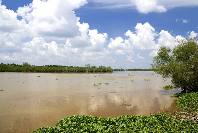 Översvämmad lerig flod royaltyfri bild