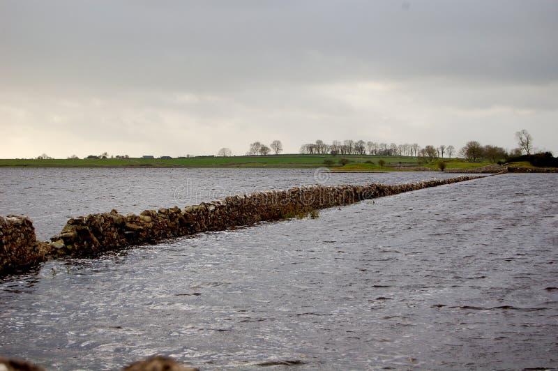 översvämmade fält arkivfoto