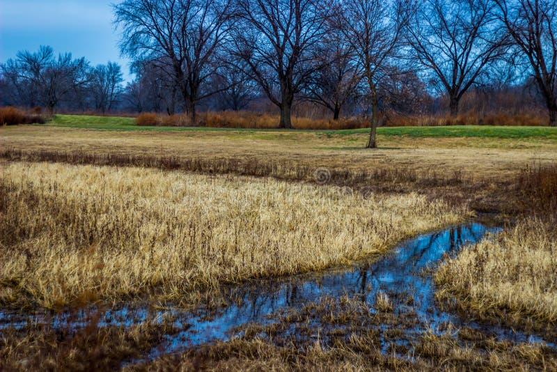 Översvämmade gångbanor på en eftersatt golfbana royaltyfria foton