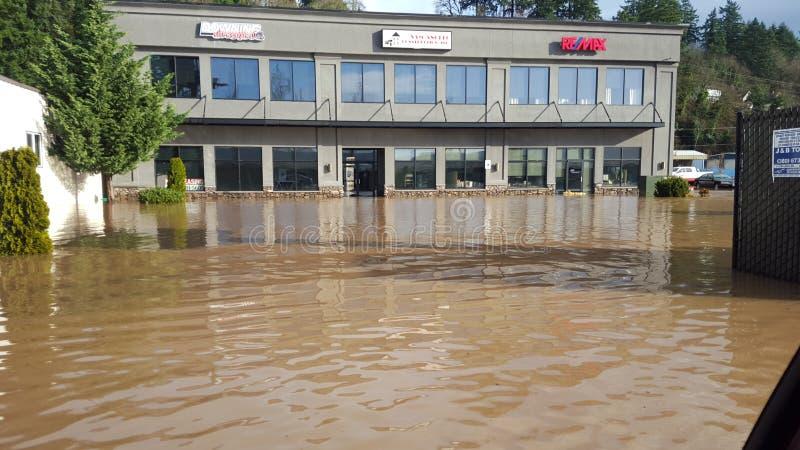 Översvämmat i city royaltyfri foto