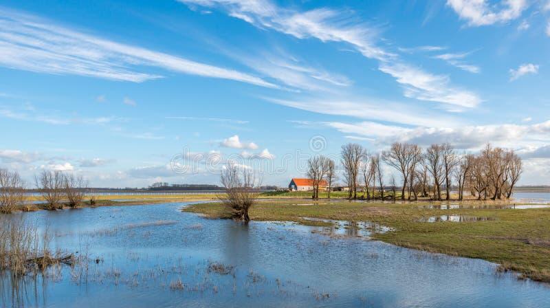 Översvämmat område till och med det höga vattnet in i en närliggande flod royaltyfri foto