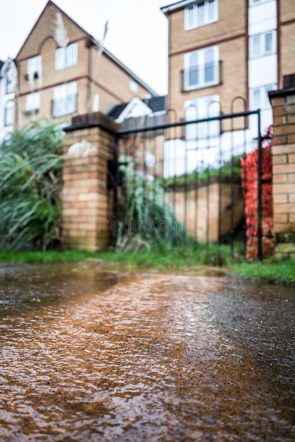 översvämning arkivbild