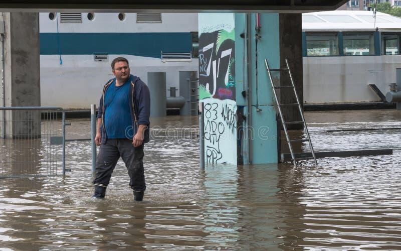 Översvämning av Seinen, effekt av global uppvärmning royaltyfri bild