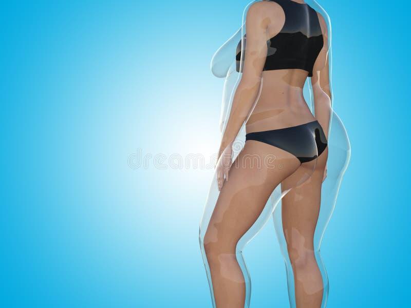 Överviktig sjukligt fet kvinnlig vs sund kropp för slank passform royaltyfri illustrationer