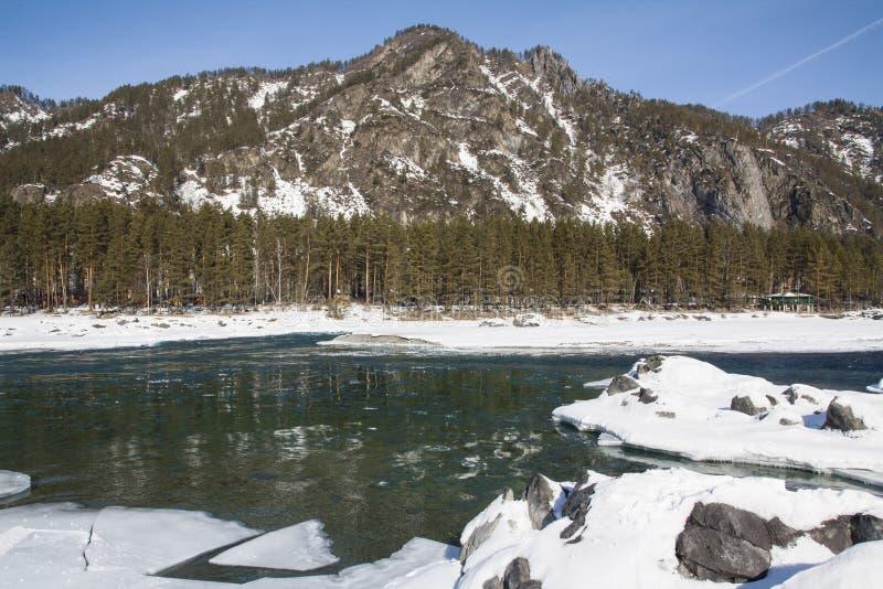 Övervintra bergfloden under is och kust- stenar royaltyfria foton
