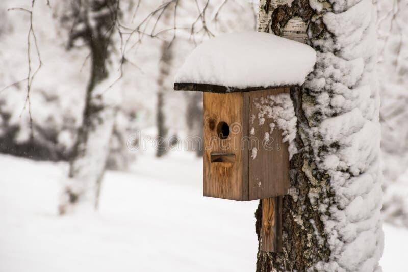 Övervintra fågelförlagemataren i skogen med snö royaltyfri foto