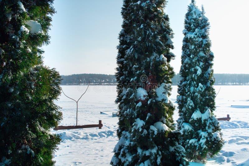 Övervintra landskapet av den djupfrysta sjön som täckas med snö och is royaltyfria bilder