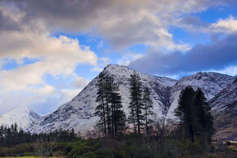 Övervintra landskapet av den skotska naturen med Glencoe berg på Gl arkivbild