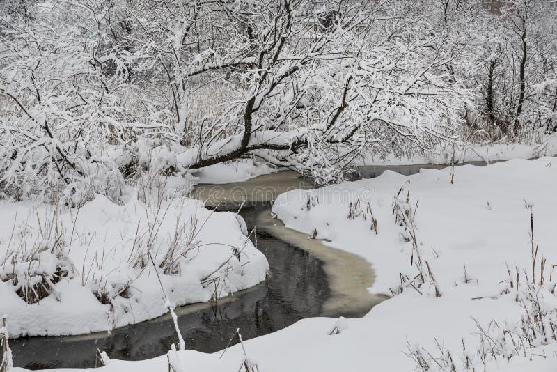 Övervintra landskapet med en djupfryst flod och snö-täckte träd arkivbild