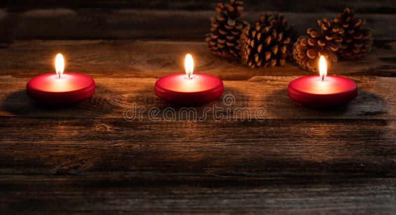Övervintra levande ljus med glödande små röda stearinljus och grankottar arkivbild