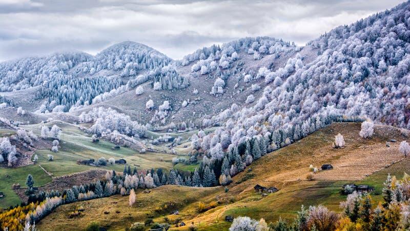 Övervintra platsen i Rumänien, vit frost över höstträd royaltyfria bilder