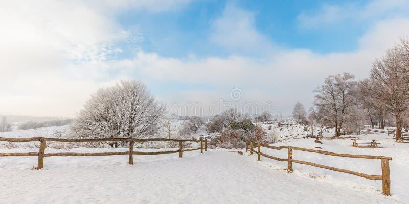 Övervintra platsen med snö på den holländska Posbanken royaltyfria foton