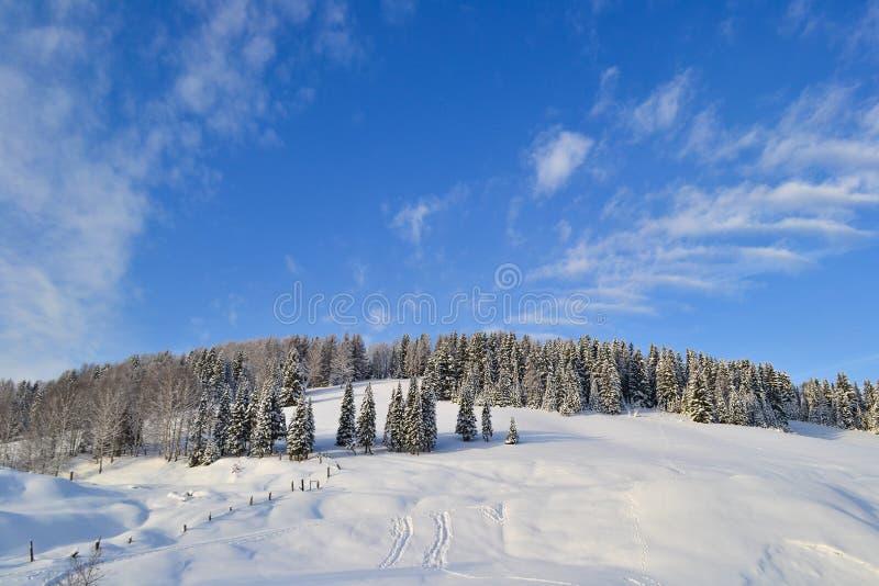Övervintra skogen i de Ural bergen, den Ryssland, Chelyabinsk regionen, Minyar Saga för Pushkin ` s arkivbild